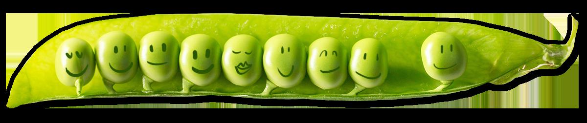 eat-fresh-chef-happy-green-peapod